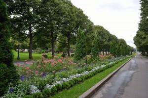 Завершается программа по благоустройству парков Москвы