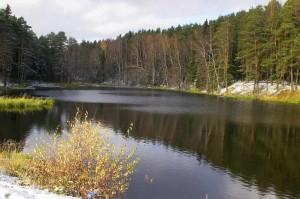 Прокуратура по охране природы проверяет «Новую Москву» на соответствие требованиям экологического законодательства