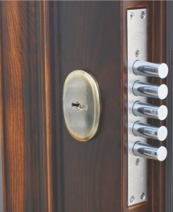 как выбрать правильную входную дверь